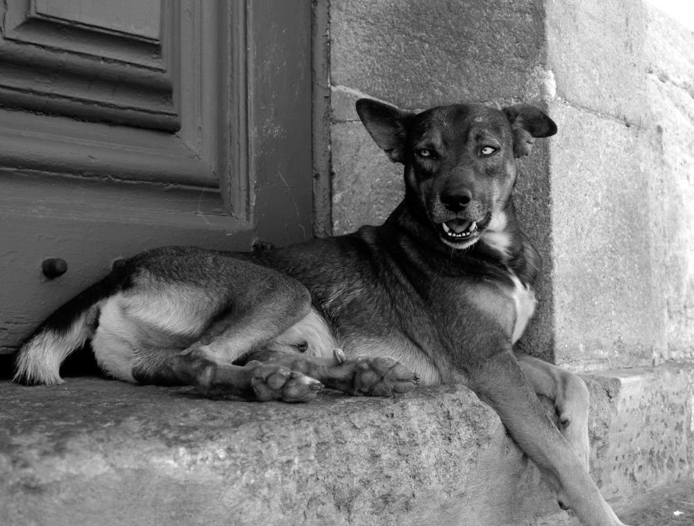 postards-lucio-de-santis-photos-fotografia-street-photography-fotografia-racconti